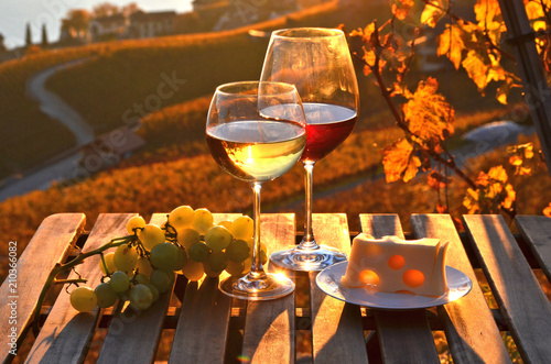 Aluminium Wijngaard Wine against vineyards in Lavaux, Switzerland