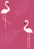 Summer background with flamingos