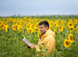 Farmer with tablet in sunflower field