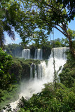 UNTAMED NATURE [IGUAZU FALLS, BORDER OF ARGENTINA AND BRAZIL]