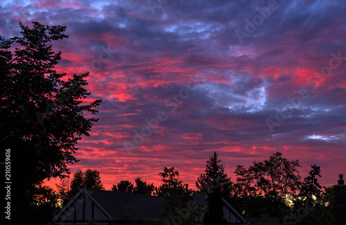 Foto Spatwand Crimson Brilliant Sunset With Silhouette of Trees and Houses in a Suburban Neighborhood