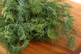 Bunch of the fresh dill leaves on a wooden cutting board - 210574875