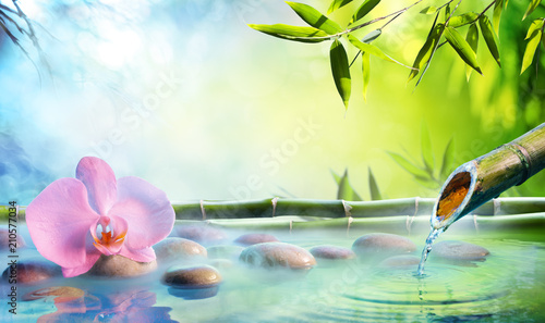 Fototapeta Zen Garden - Orchid In Japanese Fountain With Rocks And Bamboo
