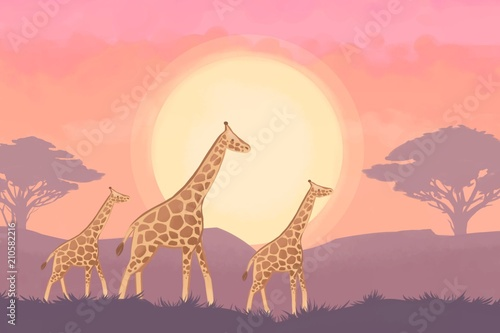 African landscape with giraffes and trees.