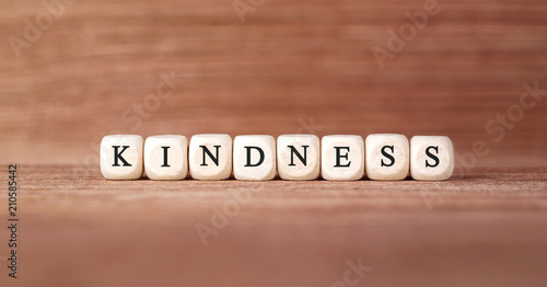 canvas print picture Word KINDNESS made with wood building blocks