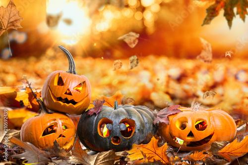Leinwanddruck Bild HerbstHintergrund Natur Halloween Kürbisse