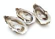 Leinwanddruck Bild - set of oysters isolated on white background