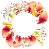 Wreath with Colorful Tropical Flowers - 210628268