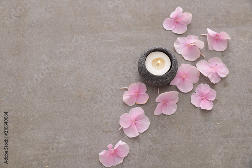Aluminium Spa Pile of Pink hydrangea petals with candle in stone bowl on gray background