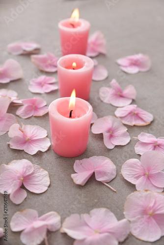 Aluminium Spa Many Pink hydrangea petals with three candle ,on gray background