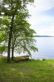 View to the lake. Boat under a tree on the shore. - 210663057