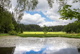 Pond in summer landscape and forests under cloudy sky