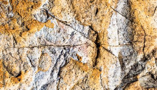 Textura de rocha - 210690863