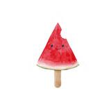 Watercolor watermelon illustration - 210692604