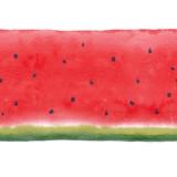 Watercolor watermelon seamless pattern - 210692680