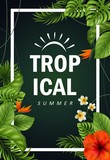 Tropical flowers and leaves - 210698477