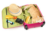 Ginger cat lying in pink suitcase on white background - 210719249