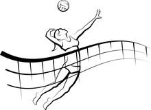 Flowing Net Beach Volleyball Female Sticker