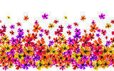 Vector seamless border with hand drawing flowers, multicolor bright artistic botanical illustration, isolated floral elements, hand drawn repeatable illustration. - 210758666