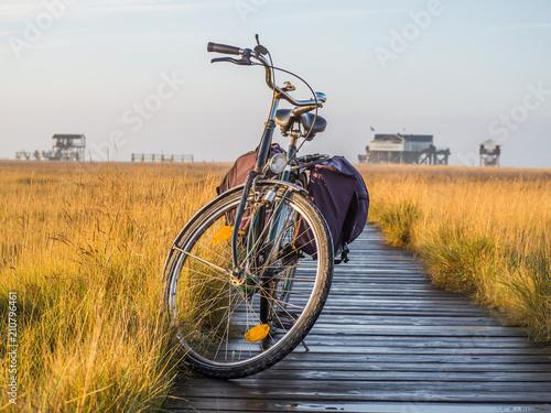Fotobehang Noordzee Mit dem Fahrrad an die Nordsee