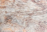 Old wood texture for background. - 210828040