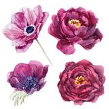 Watercolor floral set - 210855406
