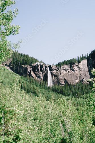 Fotobehang Olijf Colorado Nature 17