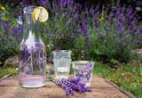 Lavendel-Limonade im Garten