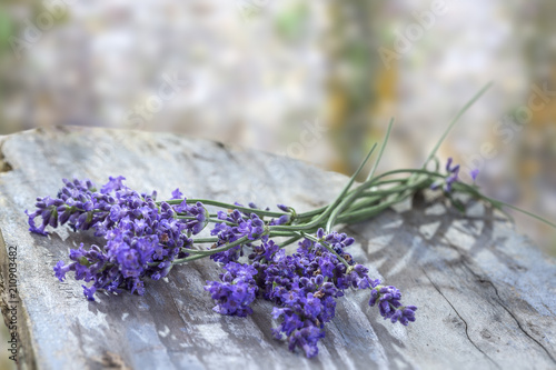 Plexiglas Lavendel Lavender flowers, bouquet, overhead on grey rustic table , over a blury wall