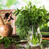 Bunch of fresh dill and parsley in glass jar, next to mortar and pestle - 210973473