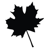 A black and white silhouette of a maple leaf