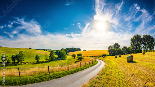 Landscape in summer with bright sun, meadows and golden cornfield in the background - 211048634