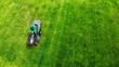 Gardener cuts lawn with a lawnmower