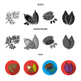 Dill, cocoa beans, basil.Herbs and spices set collection icons in black, flat, monochrome style vector symbol stock illustration web. - 211095016