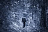 Back view of a man walks alone on forest path. Blue color tone effect and selective focus used. - 211104255