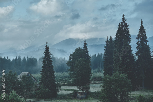 Carpathian forest and mountain landscape with small houses - 211114696