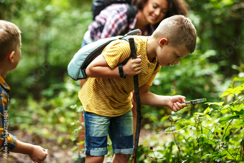 Leinwandbild Motiv Mother and her little sons hiking trough forest .Boy using magnifying glass and looking at insects.