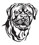 Decorative portrait of Dog Dogue de Bordeaux vector illustration
