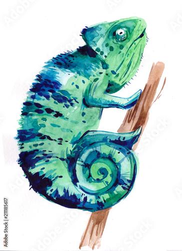Fototapeta Chameleon. Watercolor illustration