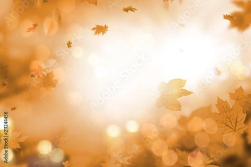 Leinwanddruck Bild holiday summer autumn leaves