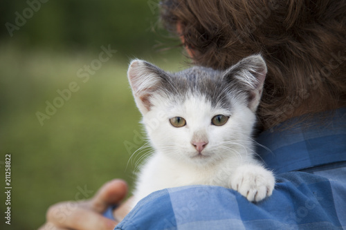 Sticker kitten on arm of the boy outdoors, child huge his love pet