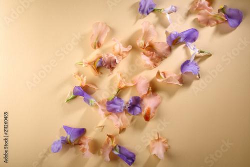 Fotobehang Iris flowers petals background