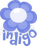 Flower Color Indigo Illustration - 211273280