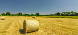 Rolling in the hay