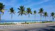 Quadro Ipanema beach and coconut trees in Rio de Janeiro Brazil