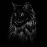 The Vector logo cat for T-shirt design or outwear.  Hunting style cat background.