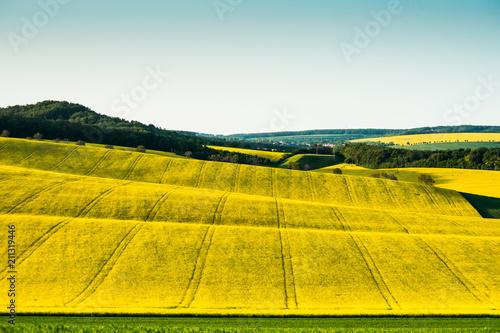Fotobehang Meloen hills and fields of south moravia czechia