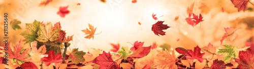 Leinwanddruck Bild autumn background