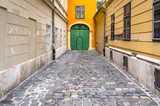Cobblestone alley ending in an old green closed door - 211326871