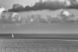 Single sailboat in a big sea. Horizon with dramatic clouds. Image in black and white. - 211364654